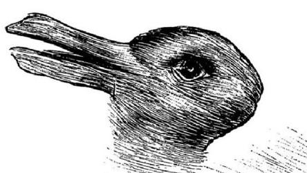duck-or-rabbit